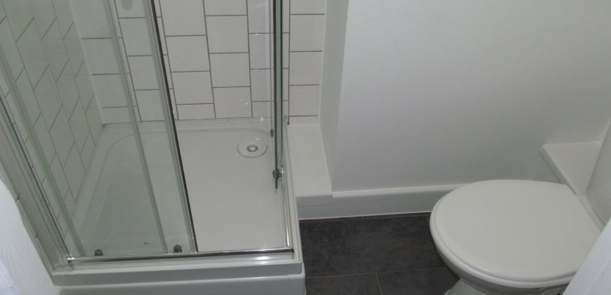 Recent Refurbishment, All Bills Included, Upmarket Double Room with Ensuite Shower, WC
