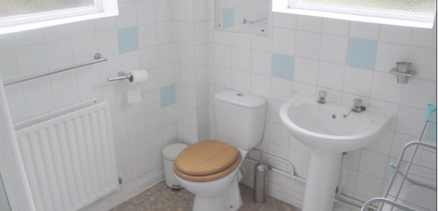 Spacious 4 Double Bedroom SUPERIOR Student House, Conservatory