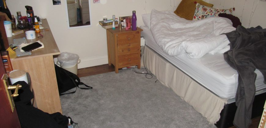 Spacious 4 Double Bedroom House, Walking Distance to University / Hospital