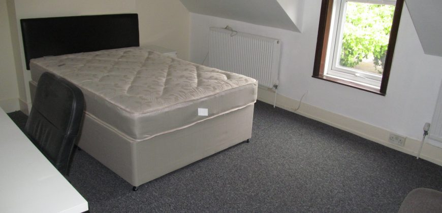 Spacious 6 Double Bed 2 Bath Student House, Lounge, Large Kitchen / Diner
